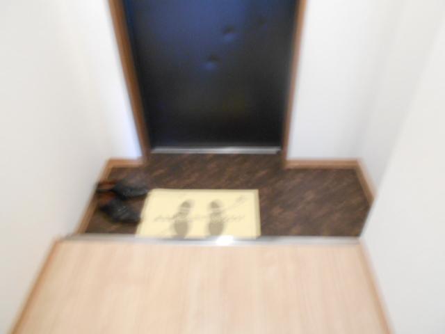 グリーンコートランザン 203号室の玄関