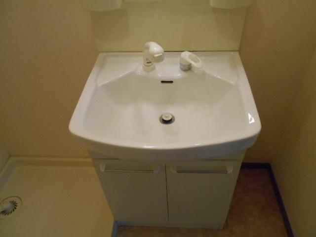 フェアリージャム 208号室の洗面所