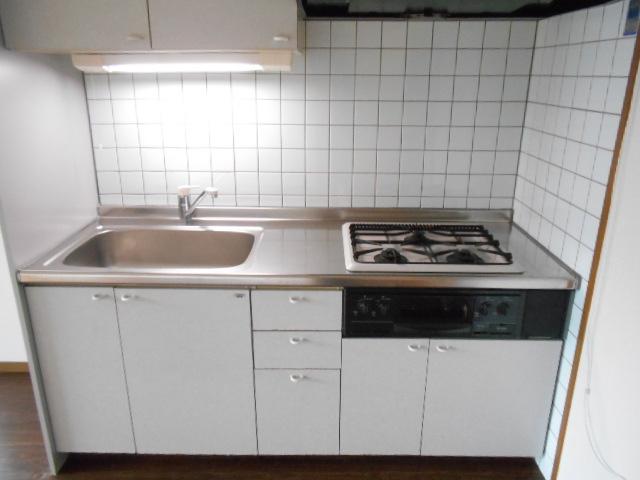 フェアリージャム 208号室のキッチン