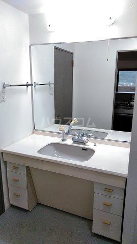 サンシティ桂坂ロイヤル弐番館 417号室の洗面所