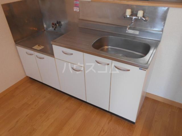 第三コーポ内藤 202号室のキッチン