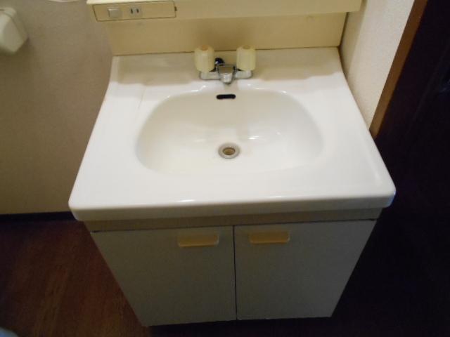 コーポアネモス 205号室の洗面所