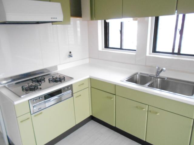 中川第6コーポ 203号室のキッチン
