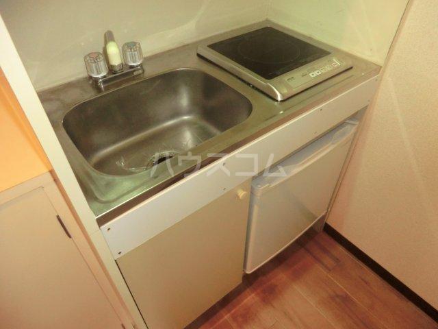 パレドゥブランシュ 213号室のキッチン