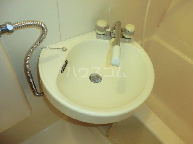 パレドゥブランシュ 213号室の洗面所