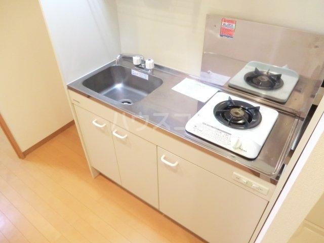 サンライズヴィラ国立 307号室のキッチン