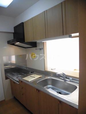 アレグリア 201号室のキッチン