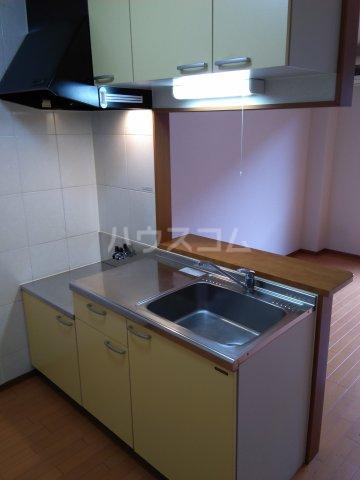 ブロードタウン神野Ⅱ C 210号室のキッチン