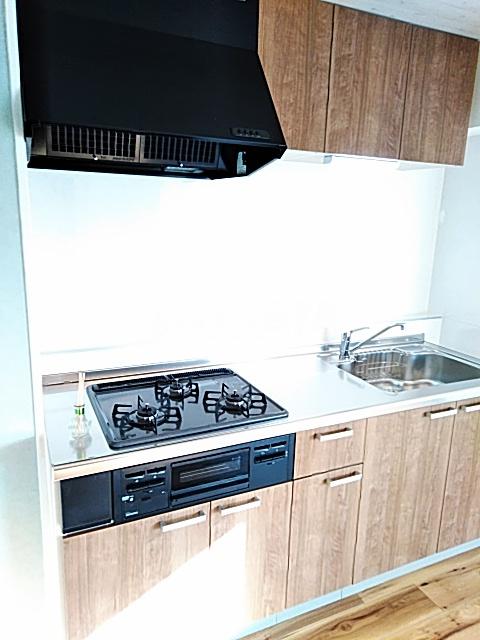 ベルガーデン向山1号館 300号室のキッチン