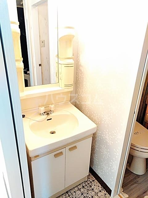 ベルガーデン向山1号館 300号室の洗面所