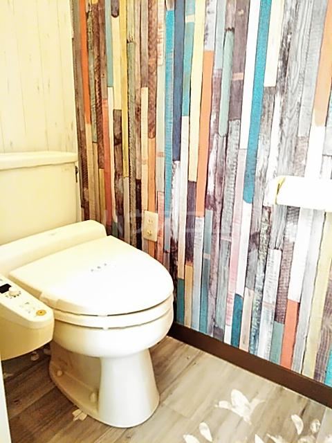 ベルガーデン向山1号館 300号室のトイレ