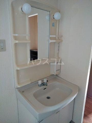 ヴィレッジ杉田C 511号室の洗面所