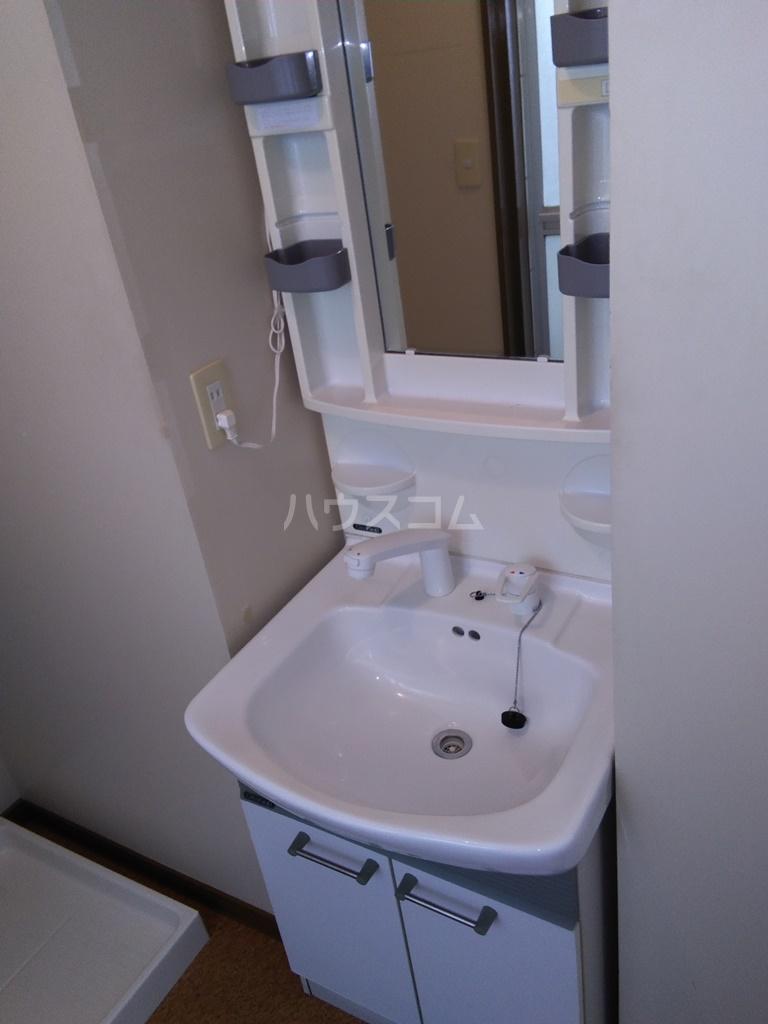塩田ハイツG 203号室の洗面所