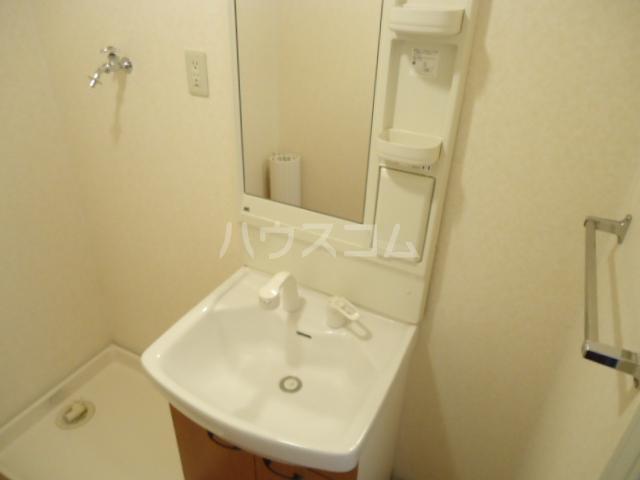 グリーンハイツ 202号室の洗面所
