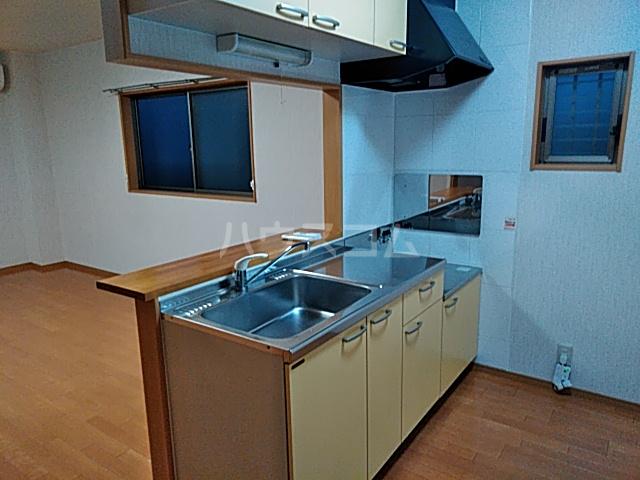 アールズコート 206号室のキッチン