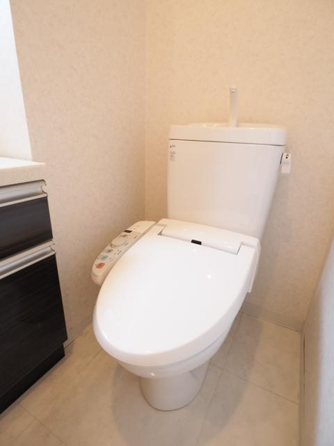 ライジング泉H・Mビル 602号室のトイレ