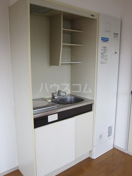 ドゥエリング国領 301号室のキッチン