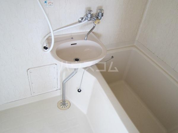 ドゥエリング国領 301号室の風呂