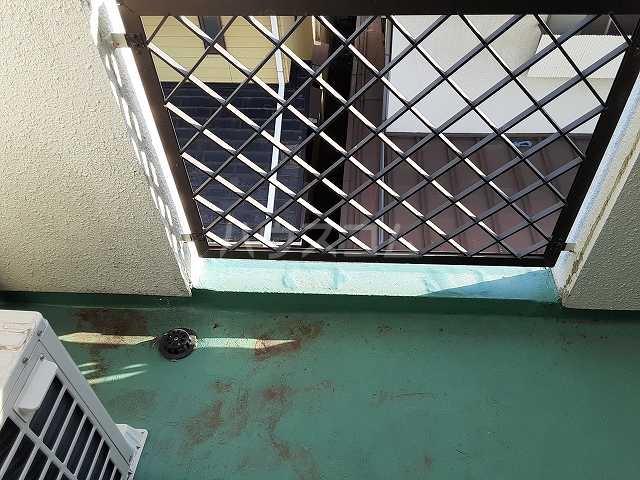 ミッキーハウス 302号室の洗面所
