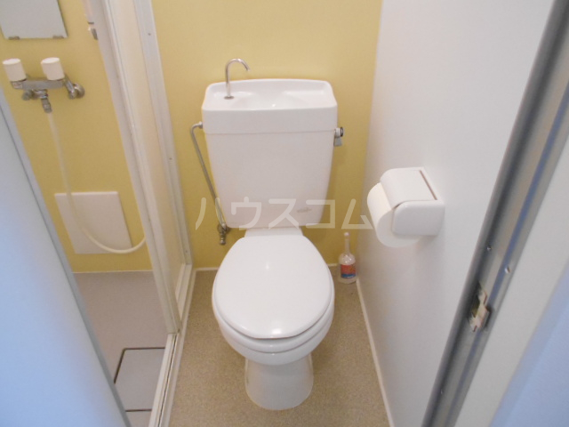 ハイツフローラ府中 501号室のトイレ