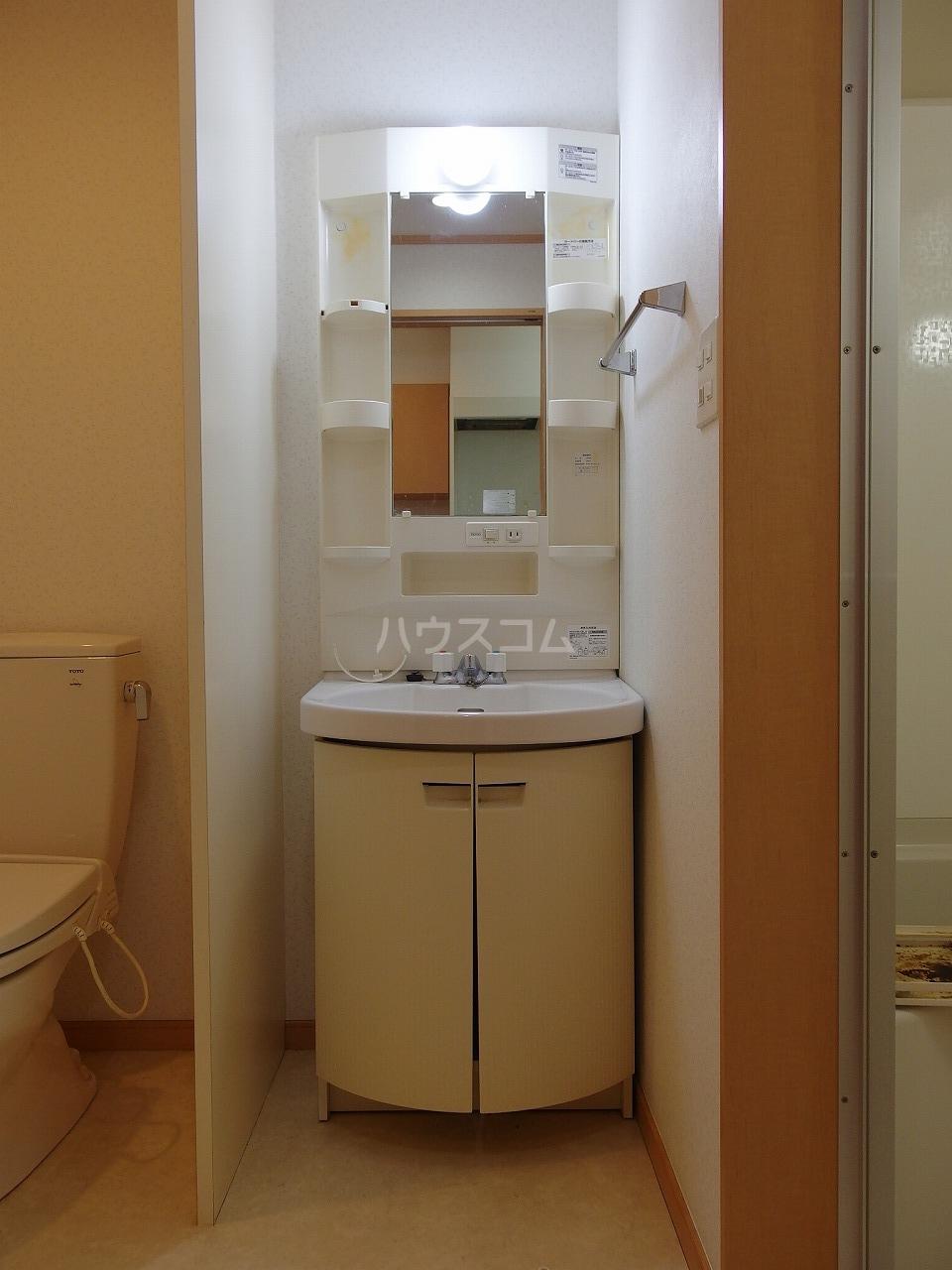 サントリナ 103号室の洗面所