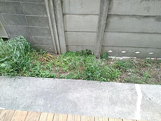 第三平和コーポ 103号室の庭