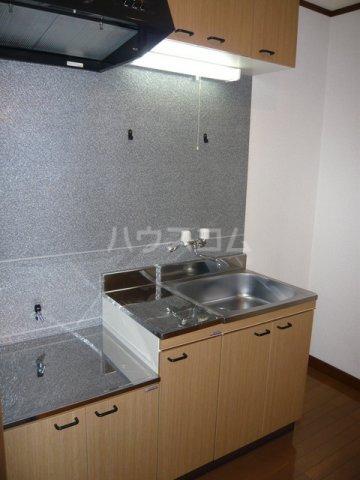 ルースレジデンツァ 203号室のキッチン