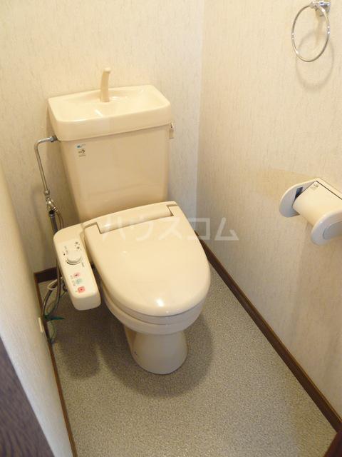 ルースレジデンツァ 203号室のトイレ