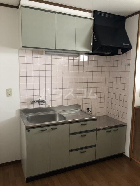 カーサ・ハナミズキ 202号室のキッチン