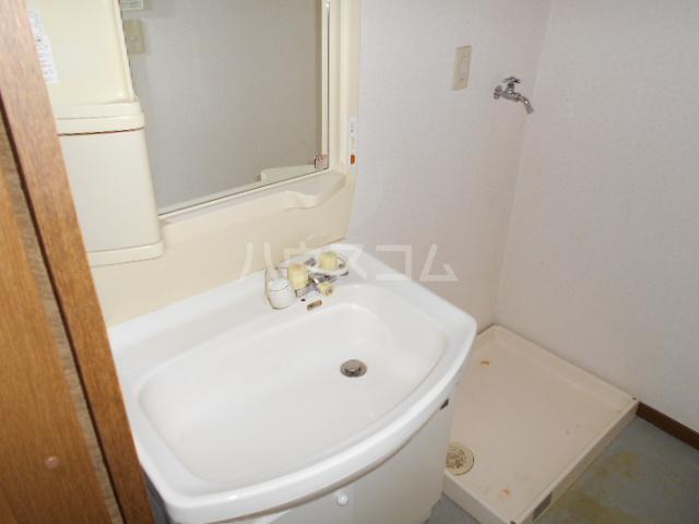アイランドパレス C 202号室の洗面所