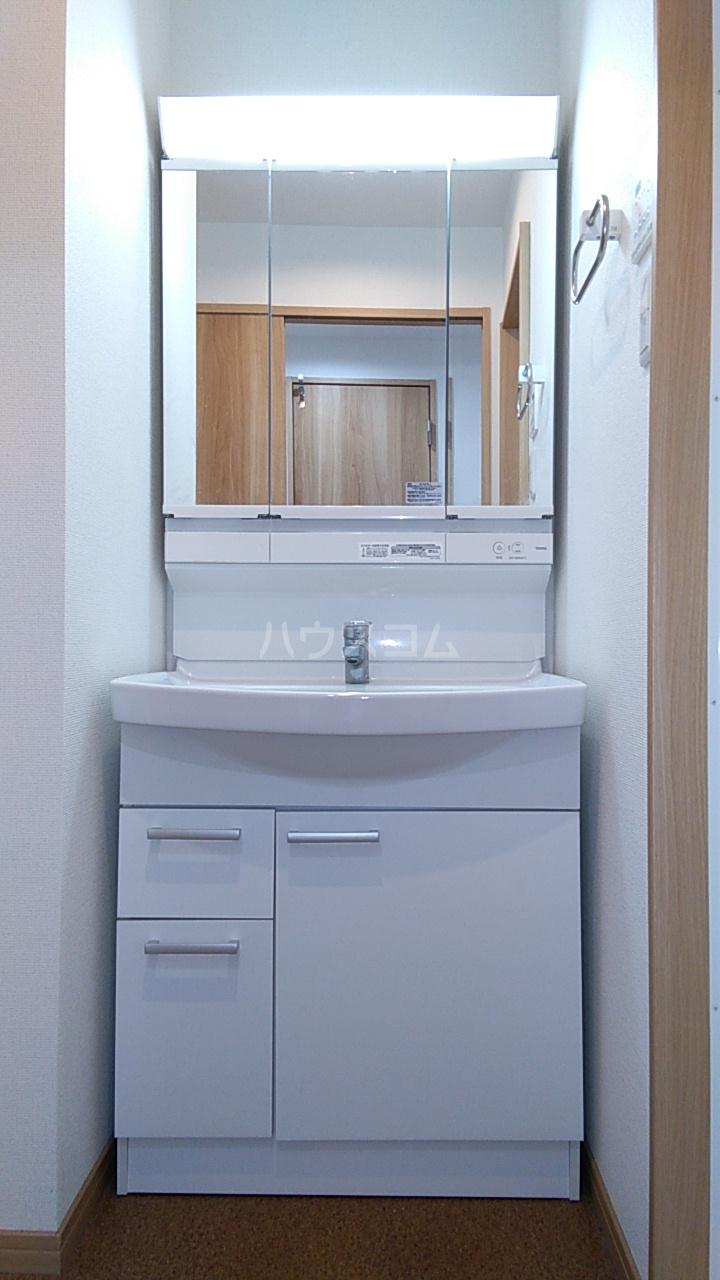 APLⅡ 303号室の洗面所