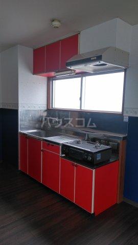 アルカディア高崎 201号室のキッチン