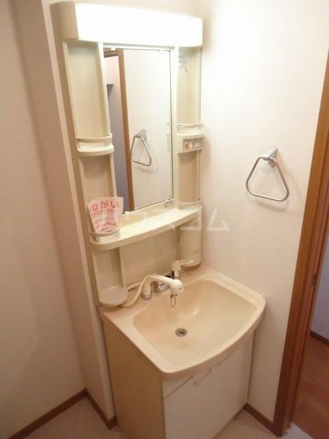 パークウッドB 02020号室の洗面所