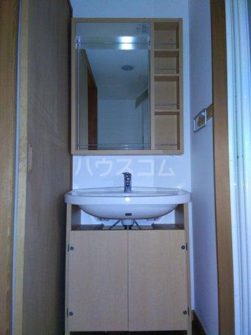 ALM HAUS 101号室の洗面所