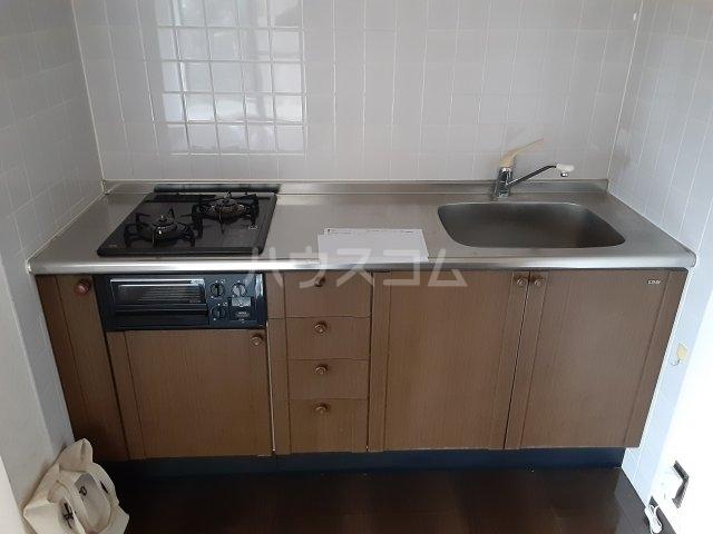 ライブパレス花水木 203号室のキッチン