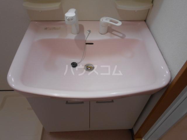 メゾン・ド・プロバンス 305号室の洗面所