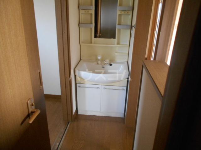 コーポ21A 202号室の洗面所
