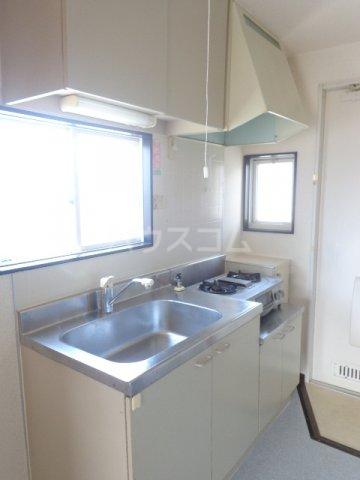 プロムナードハイツ 203号室のキッチン