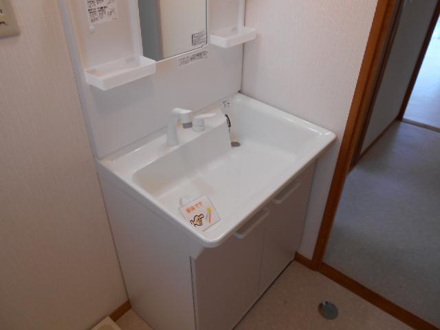 レジデンスY・S 303号室の洗面所