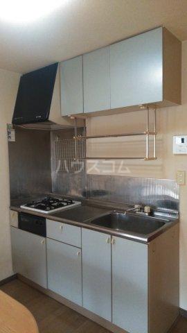 ドルフィンダイヤモンドⅡ 101号室のキッチン