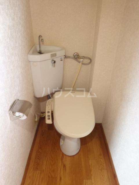 ニューリバーハイツ林 106号室のトイレ