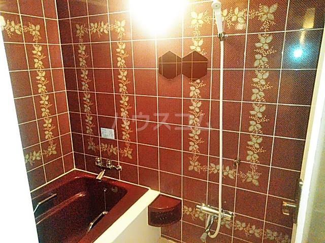 アイビーガーデン 205号室の風呂