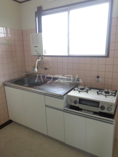 第一サンライフ大嶋 303号室のキッチン