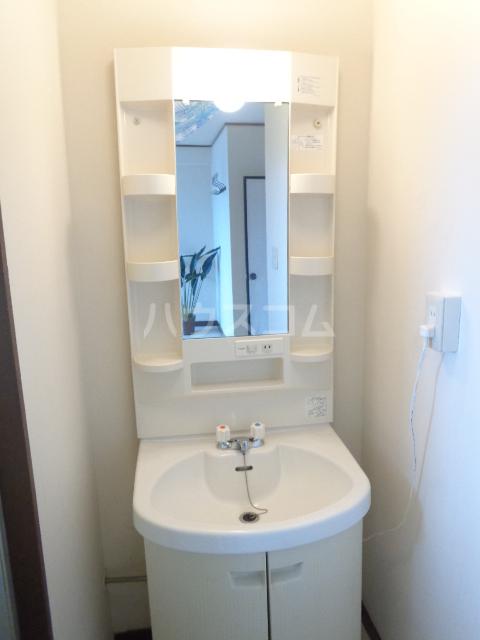 第一サンライフ大嶋 303号室の洗面所