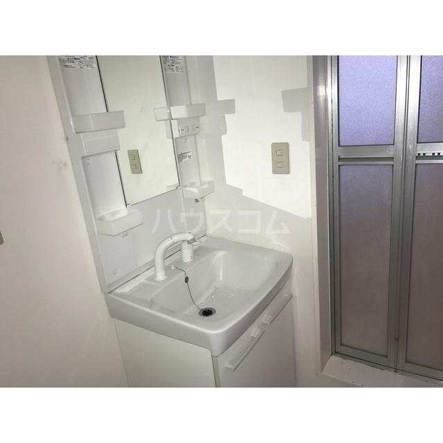 チェリーヒル 2-D号室の洗面所