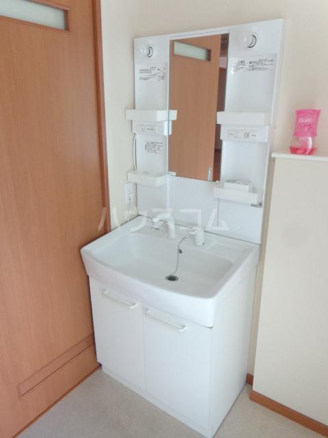 ピアビル 3-D号室の洗面所