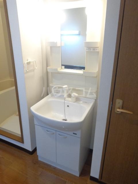 レジデンスカープ前橋 205号室の洗面所