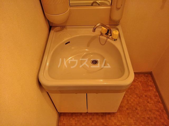 シャトーグローリー 202号室の洗面所