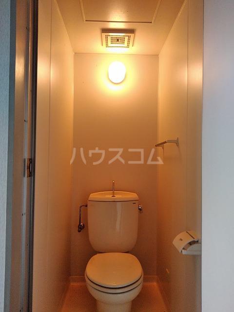 シャトーグローリー 202号室のトイレ
