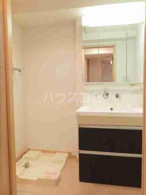 サニーブローテ カネサワ 02040号室の洗面所